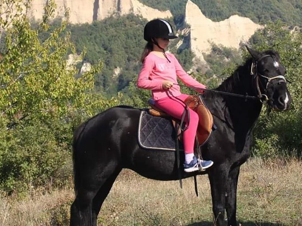 Урок по конна езда за начинаещи