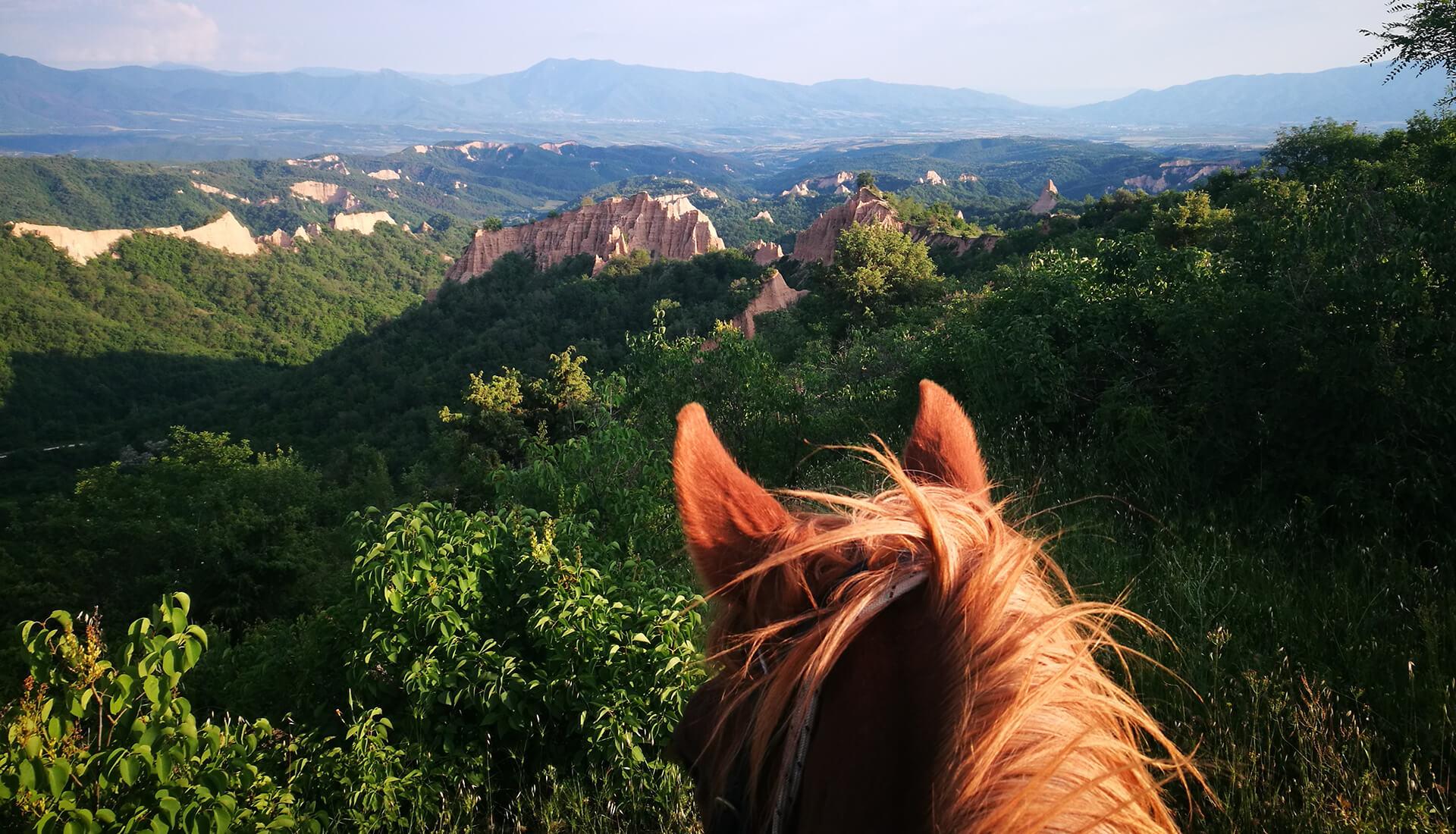 Клуб по конен спорт Тангра